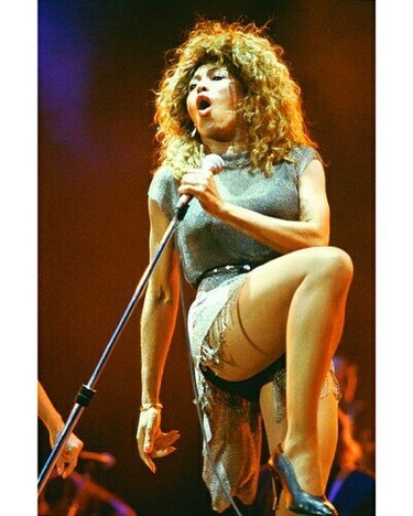 Y_turnertinaphotoxltinaturner622703