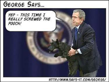 Bush_georgesays1_1