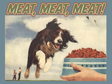 Dog_meatydog800