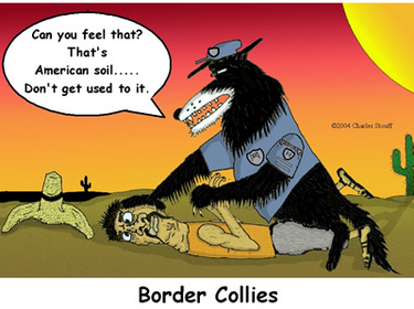 Yoohoo_border_collies_atheist_jew_1